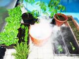 LF-003  Mlhovač pro teraristiku a pěstitelství vče